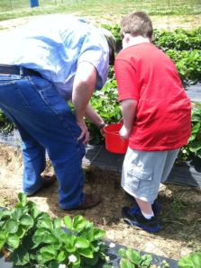 My Dad showing my son how to pick a berry.