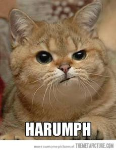harumph_cat