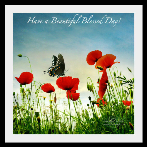 HaveaBeautifulBlessedDay